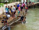 WartaKepri - anak-anak Anambas bersihkan sekolah