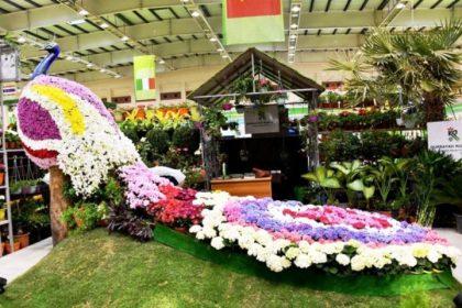 Wartakepri, Suasana Bahrain International Garden Show (BIGS) 2017